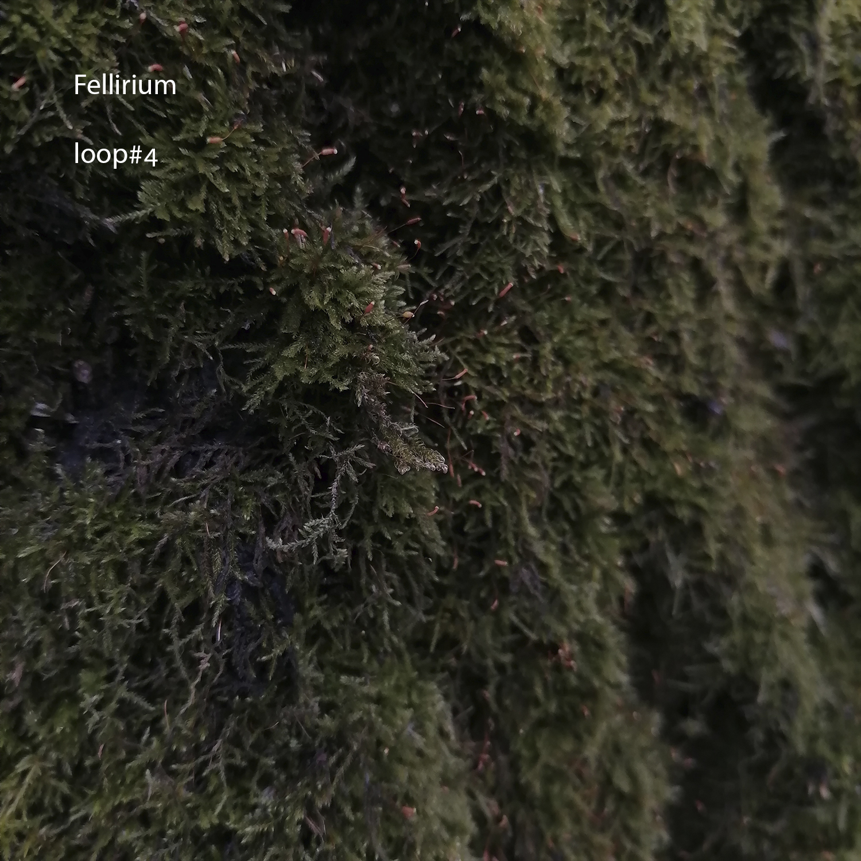 Fellirium – Loop 4